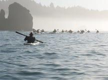 Grupp av havskayakers Royaltyfria Foton
