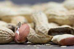 Grupp av jordnötter Arkivbilder