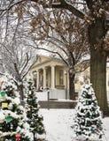 Grupp av julgranar framme av den Fauquier County domstolsbyggnaden i Warrenton Virginia Arkivfoton