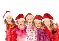 Grupp av julungar Arkivbild
