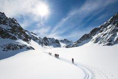 Grupp av klättrare roped till toppmötet royaltyfri fotografi