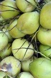 Grupp av kokosnötter Arkivfoto
