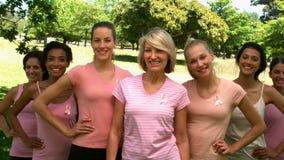 Grupp av kvinnor som bär rosa färger för bröstcancer i parkera stock video