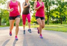 Grupp av kvinnor som joggar i natur Arkivfoton