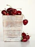 Grupp av läckra Cherry Royaltyfri Bild