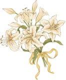 Grupp av liljor Royaltyfria Bilder