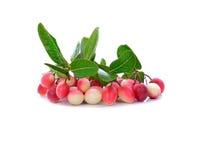 Grupp av liten rosa färgfrukt Carunda eller Karonda Royaltyfri Fotografi