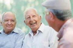 Grupp av lyckliga gammalare män som skrattar och talar Arkivfoton
