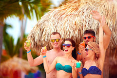 Grupp av lyckliga vänner som har gyckel på den tropiska stranden, sommarferieparti Royaltyfria Foton