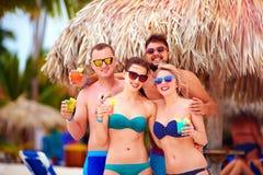 Grupp av lyckliga vänner som har gyckel på den tropiska stranden, sommarferieparti Arkivfoton
