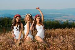 Grupp av modellerna, härliga attraktiva flickor i baddräkt Royaltyfria Foton