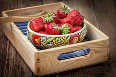 Grupp av mogen strawberrie Royaltyfri Foto