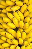 Grupp av mogna bananer Arkivfoton