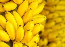 Grupp av mogna bananer Royaltyfri Fotografi