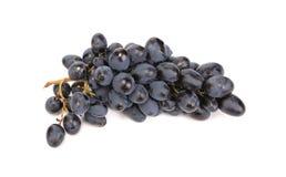 Grupp av mogna och saftiga svarta druvor. Arkivfoto