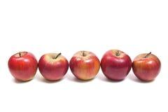 Grupp av mogna röda äpplen på en vit bakgrund Med att fästa ihop PA Royaltyfria Bilder