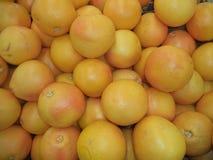 Grupp av mogna röda grapefrukter royaltyfria foton
