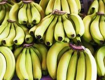 Grupp av mognade bananer på livsmedelsbutiken Royaltyfri Bild