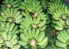 Grupp av mognade gröna organiska bananer Arkivbild