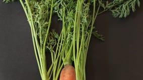 Grupp av morötter