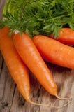 Grupp av morötter Royaltyfria Bilder