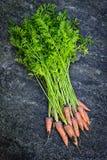 Grupp av morötter som är nya från trädgård Arkivbild