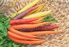Grupp av morötter som är tricolor, på en vide- korg arkivbild