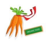 Grupp av morötter med fullvuxna Eco för röd för grönsakillustration för band ny organisk lantgård produkter Royaltyfria Bilder