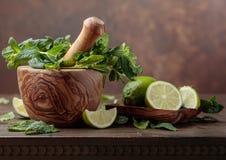 Grupp av ny grön organisk mintkaramell och limefrukt Royaltyfria Bilder