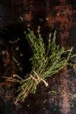 Grupp av ny organisk timjan royaltyfri foto