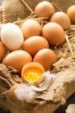 Grupp av nya bruna ägg i en träspjällåda Arkivfoton