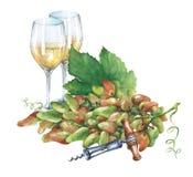 Grupp av nya druvor, korkskruv och exponeringsglas av vitt vin Arkivbild