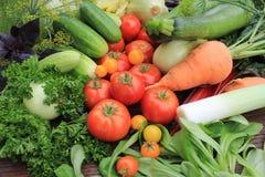 Grupp av nya grönsaker Arkivfoton