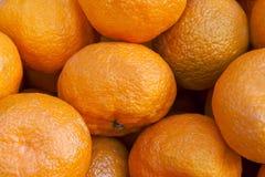 Grupp av nya mandarinapelsiner Fotografering för Bildbyråer