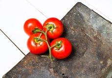 Grupp av nya mogna tomater på tappningmörkerbakgrund Royaltyfri Fotografi