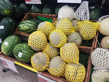 Grupp av nya organiska gröna cantaloupmelonmelon och den stora bollen med Arkivfoton