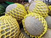 Grupp av nya organiska gröna cantaloupmelonmelon och den stora bollen med Royaltyfri Foto