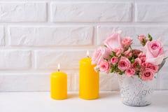 Grupp av nya rosa rosblommor i kruka och två gula stearinljus Royaltyfri Fotografi