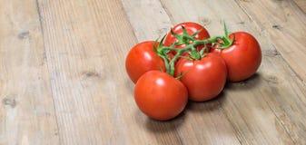 Grupp av nya saftiga tomater på trä Royaltyfria Bilder