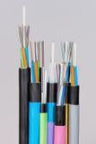 Grupp av 7 olika slut för optisk kabel för fiber med det avrivna omslaget och utsatta kulöra fibrer arkivfoton