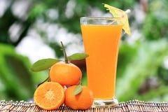 Grupp av orange och orange fruktsaft royaltyfri bild