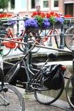 Grupp av parkerade cyklar Arkivbilder