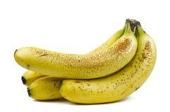 Grupp av prickiga bananer royaltyfria bilder