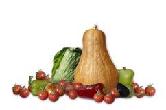 Grupp av pumpa, kål, peppar och tomaten Royaltyfri Foto
