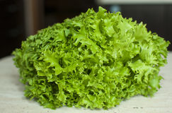 Grupp av rått organiskt grönt friseesalladslut upp Royaltyfria Foton