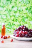 Grupp av röda druvor och vin mot grön suddighetsbakgrund royaltyfri bild