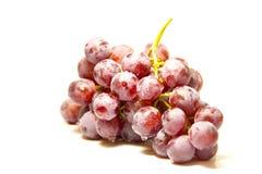 Grupp av röda druvor som täckas med fruktvaxet som isoleras på vit bakgrund arkivbilder