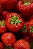 grupp av röda jordgubbar royaltyfri bild