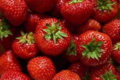 grupp av röda jordgubbar arkivfoton