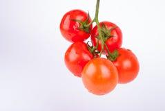 Grupp av röda körsbärsröda tomater Arkivbild